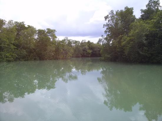 Pulau Ubin, Singapore: One of the lakes