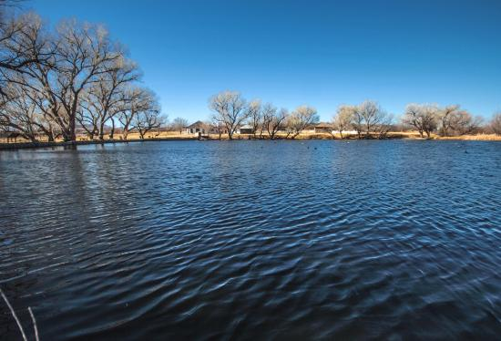 Douglas, AZ: pond on the San Bernardino Ranch / John Slaughter Ranch