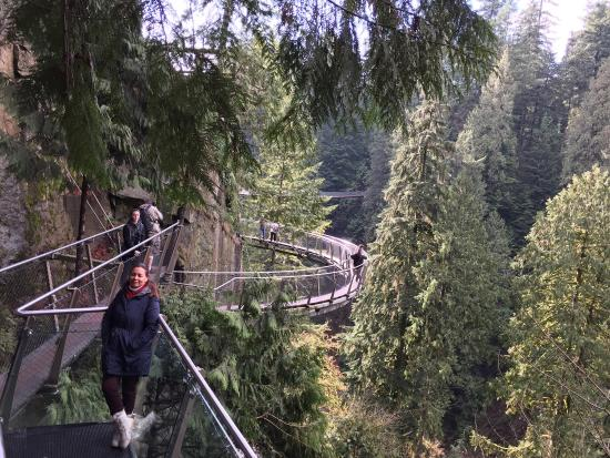 North Vancouver, Kanada: Um dia inesquecível, um lugar carregado de muitas energias e para quem não tem medo de alturas.