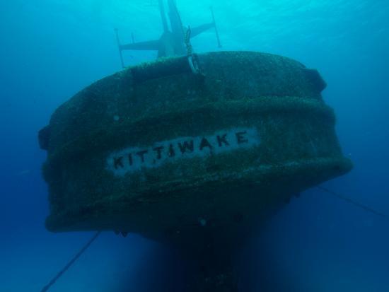 Kittiwake Shipwreck & Artificial Reef: Stern of the Kittiwake