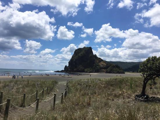 Piha, نيوزيلندا: Piha Beach and Lion Rock!