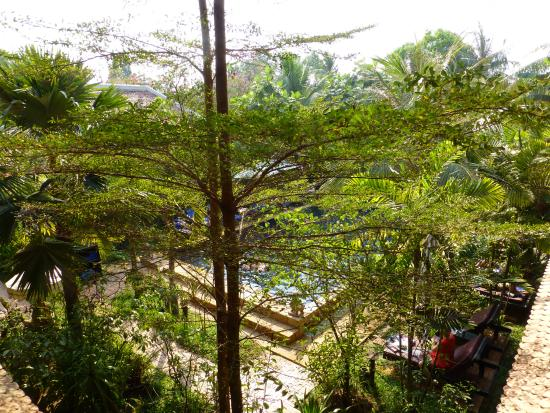 Siddharta Boutique Hotel: View from 1st floor to pool area