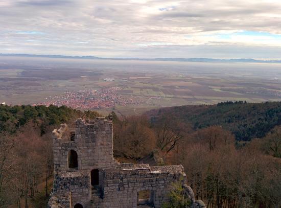 Photo de Dambach-la-Ville prise du haut de la tour du Bernstein.