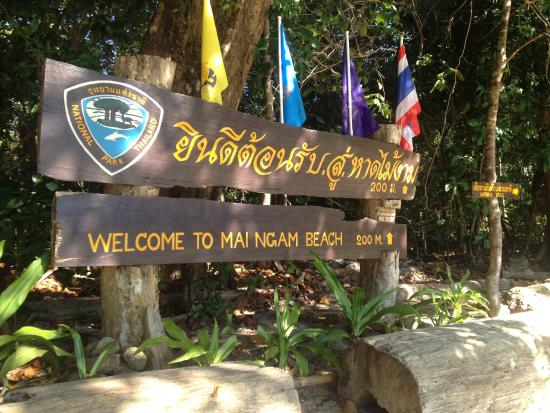 Khuraburi, Ταϊλάνδη: Welcome to Mai Ngam Beach!