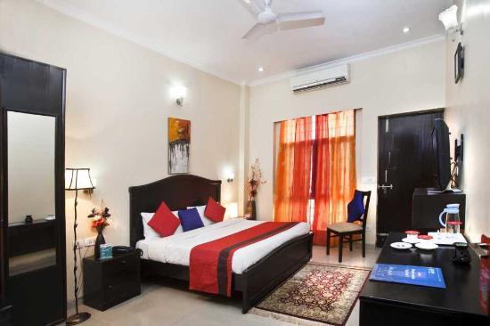 Queens Apartments: Standard Room