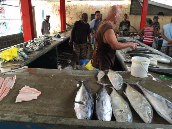 Victoria, Îles Seychelles : fish section