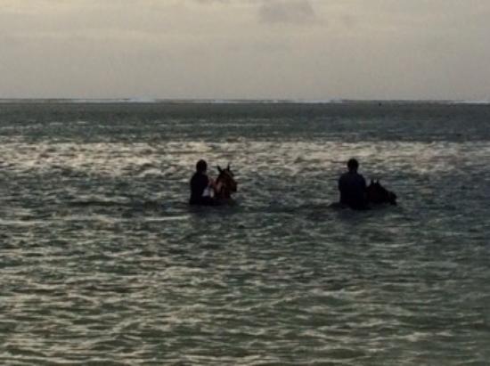 Riambel: Swimming