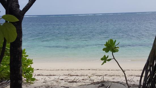 Alphonse Island, Seychellerna: The beach in front of our bungalow