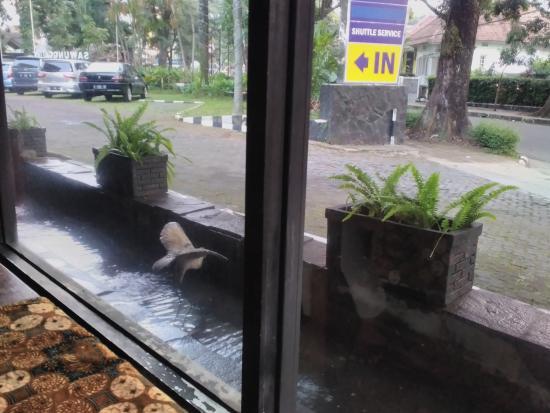Hotel Bumi Sawunggaling : Lokasi dekat jalan raya