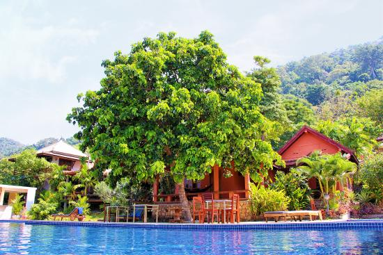 vanna hill resort kep cambodia hotel reviews photos price rh tripadvisor co uk