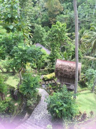 Tegalalang, Indonésia: カンプン カフェ & コテージ