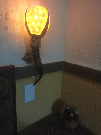 Marloth Park, África do Sul: This Lamp is Pretty Cool .. Let's be honest .. lol