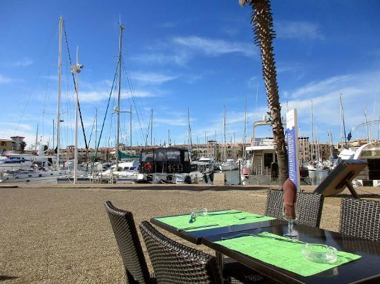Port Leucate, ฝรั่งเศส: Blick von der Terrasse des Restaurants auf den Hafen