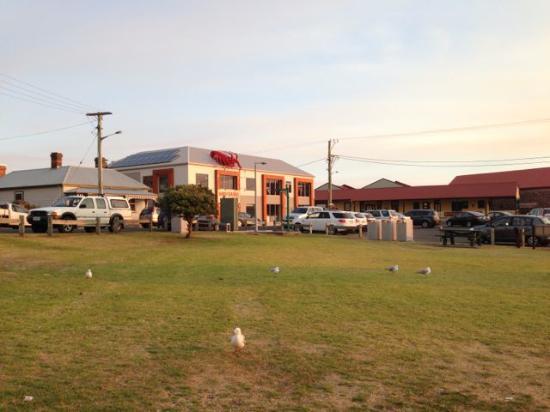 สแตนลีย์, ออสเตรเลีย: There is a public park with picnic tables across from the restaurant -- convenient for takeaway!
