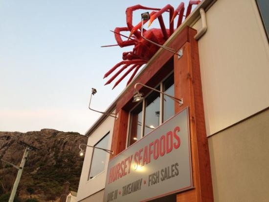 สแตนลีย์, ออสเตรเลีย: You can't miss finding this place in Stanley! Look for the huge crayfish on the roof!!