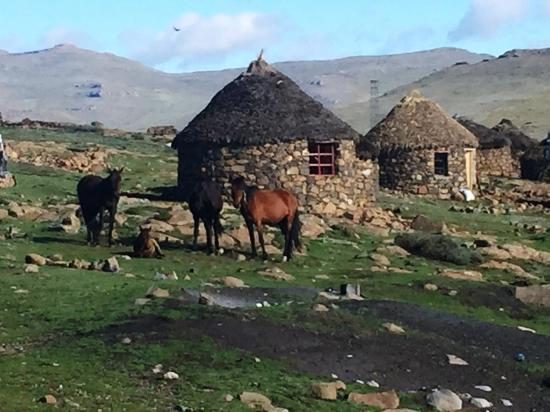 Sani Pass, Lesoto: Road to the backpackers, from Sani Mountain Lodge