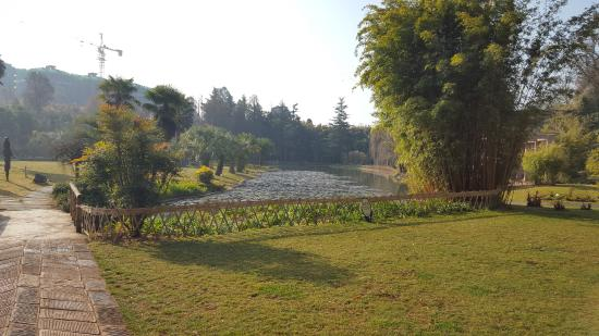 Kunming Botanical Garden: Park View