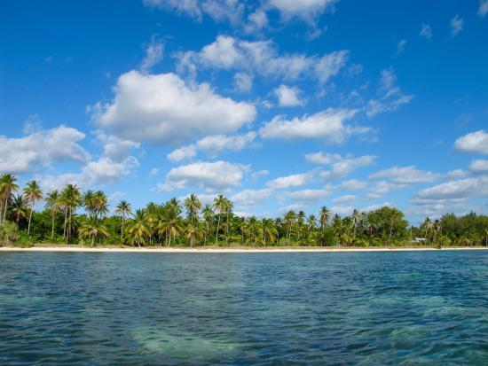 Hoga Island Dive Resort張圖片