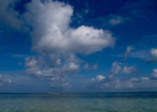 Hoga Island ภาพถ่าย