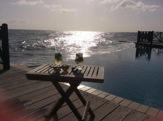 Scuba Lodge & Suites: Heerlijk cocktail bij het zwembad