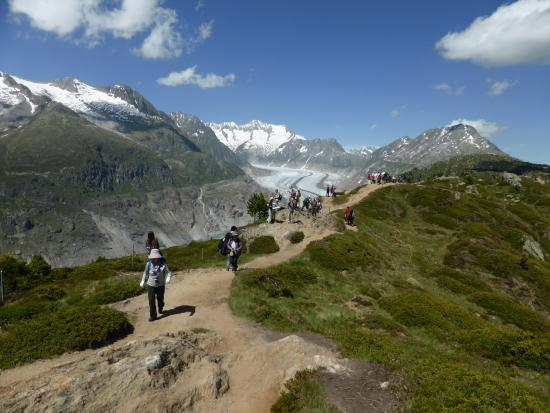 Aletsch Glacier: The Glacier from the top of the cable - for those who don't like to suffer!