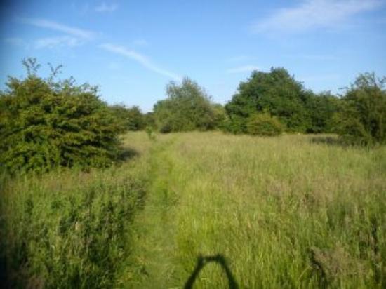 Sale Water Park paths during summer months