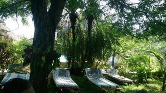 Msambweni, Kenia: Relax near the Pool