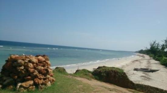 Msambweni Beach strech