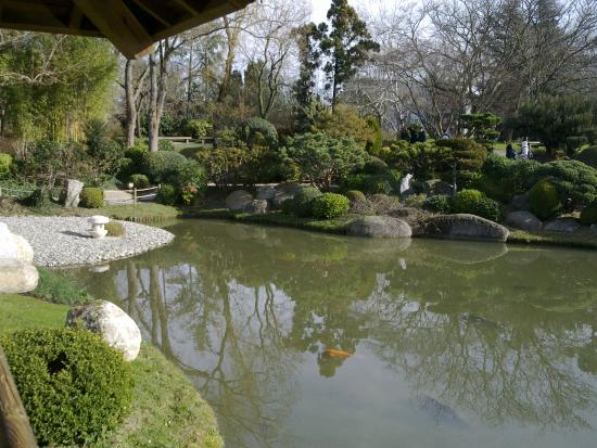 Jardin zen picture of jardin japonais toulouse - Bassin jardin japonais ...