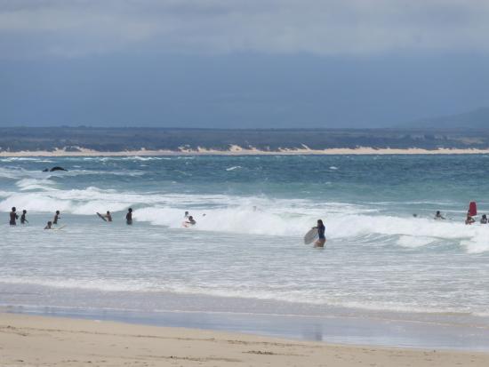 Dolphin Beach: Dolphin Bay