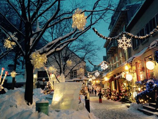 Les Tours Du Vieux Quebec Reviews