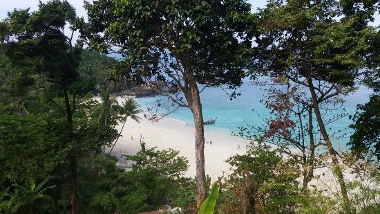 Freedom Beach: 20160205_102845_large.jpg