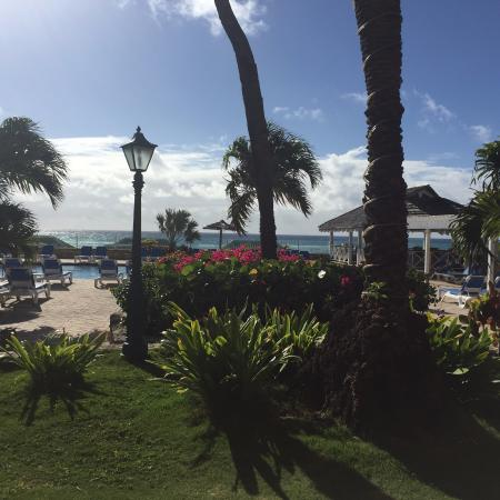 Mamora Bay, Antigua: This is a photo taken from my table at breakfast, looking out at the pool/pool bar and the ocean