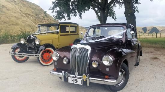 Napier, Neuseeland: Buttercup and Queenie on wedding duty