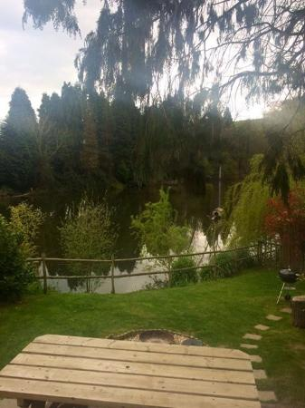 Crewkerne, UK: Our garden view of the lake