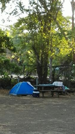 Congo's Hostel & Camping