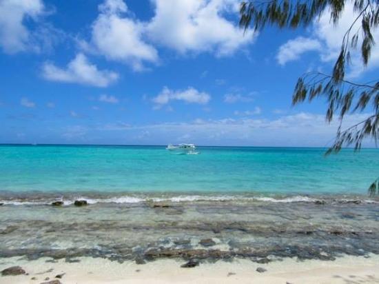 Foto de Heron Island