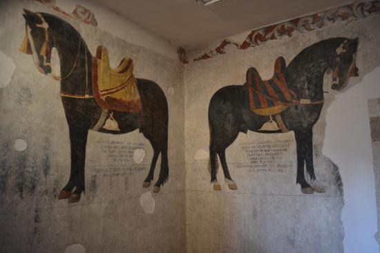 Venafro, Italia: Piano nobile, i Cavalli.