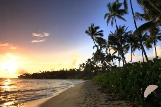 Hawaii Volcanoes National Park : mesmerising sight