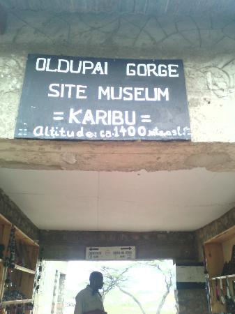 Ngorongoro Conservation Area, Tanzania: Historical study as early time from human being to new model living but lot of things to learn w