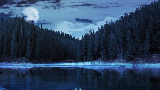 Full Moon Lake Tahoe Kayak Tour - Picture of Tahoe Jack's ...