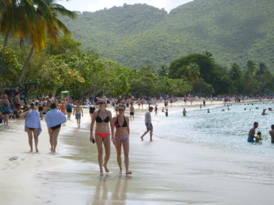 Magens Bay Crowded