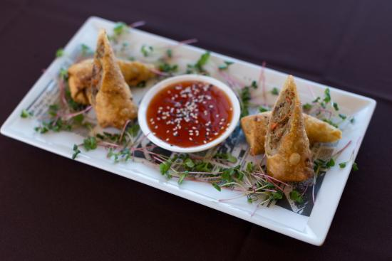 Lakewood, NJ: Crispy fried Beef Spring Roll