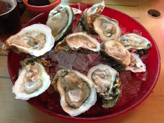 happy hour special 1 2 priced oysters on the half shell picture rh tripadvisor com