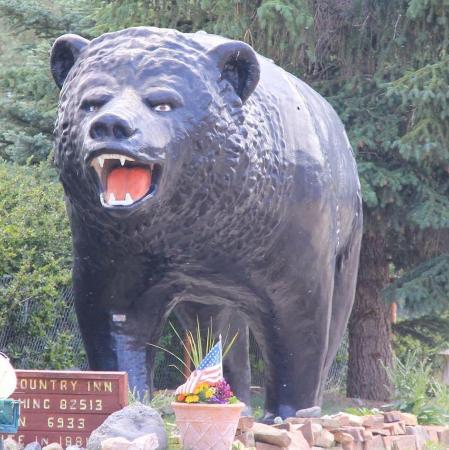 Black Bear Inn: The Bear!