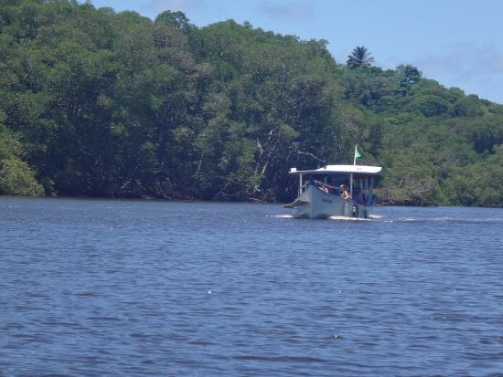 Ilheus, BA: trajeto de barco até o Rio do Engenho