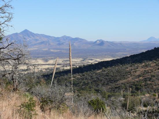Hereford, AZ: View of Mexican border from Coronado National Memorial