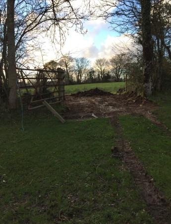 Newcastle Emlyn, UK: YASMIN'S new veg and chicken farm started to day:)