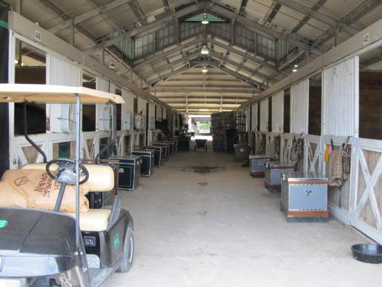 Wellington, FL: Stables and Tack boxes
