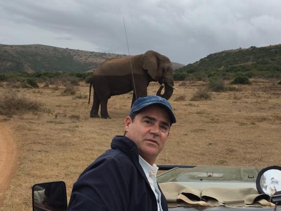 HillsNek Safaris, Amakhala Game Reserve